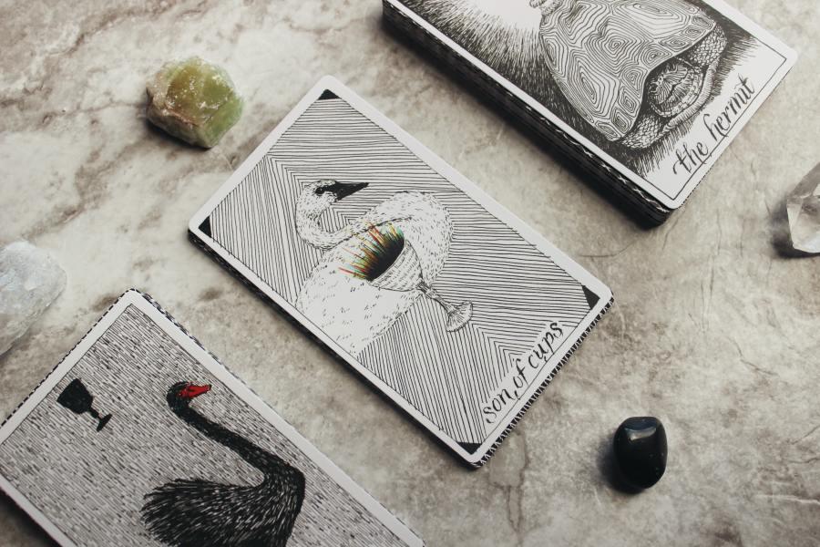 Tarot by Jen Theodore via Unsplash